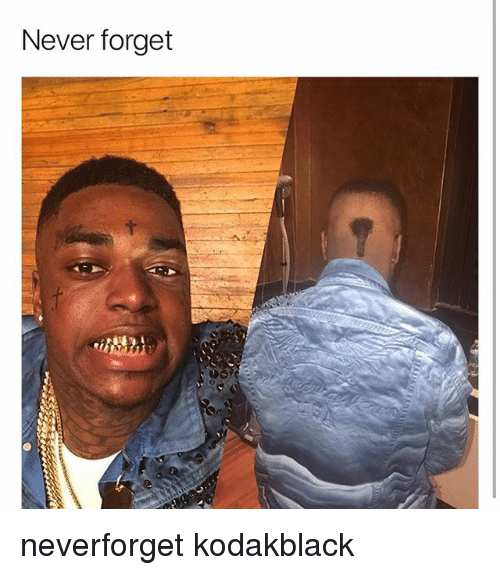 Memes, Never, and 🤖: Never forget neverforget kodakblack