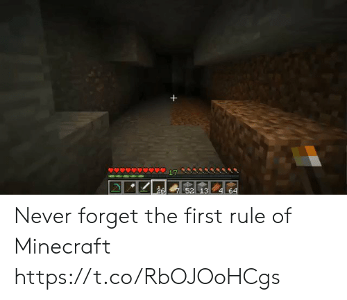 Minecraft, Never, and First: Never forget the first rule of Minecraft https://t.co/RbOJOoHCgs
