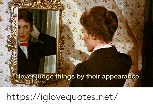 Never, Net, and Judge: Never judge things by their appearance https://iglovequotes.net/