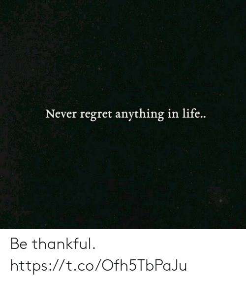 Life, Memes, and Regret: Never regret anything in life.. Be thankful. https://t.co/Ofh5TbPaJu