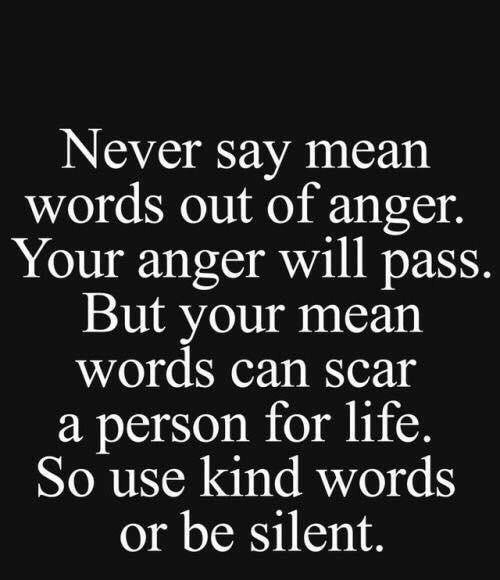 Life, Memes, and Mean: Never say mear  words out of anger.  Your anger will pass.  But your mean  words can Scar  a person for life.  So use kind words  or be silent.