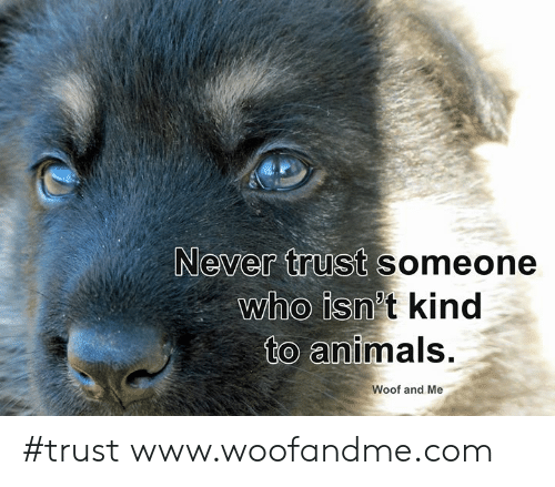 woof: Never trust someone  who isn't kind  to animals.  Woof and Me #trust www.woofandme.com