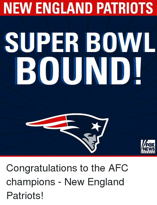 New England Patriot: NEW ENGLAND PATRIOTS  SUPER BOWL  BOUND!  FOX  NEWS Congratulations to the AFC champions - New England Patriots!