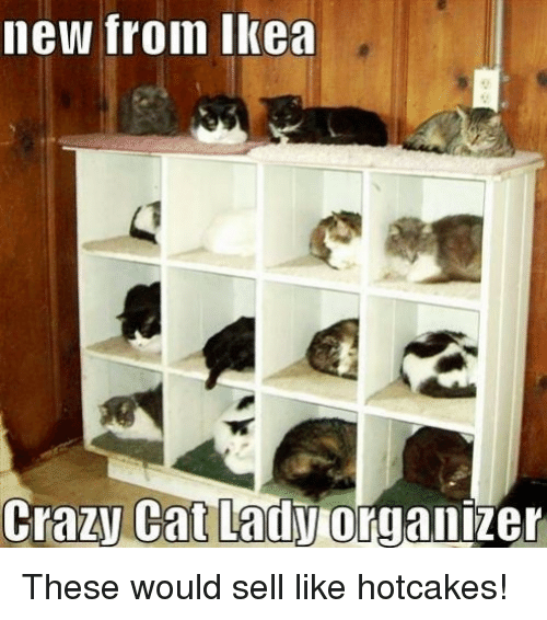 crazy cats: new from Ikea  Crazy Cat Lady  organizer These would sell like hotcakes!