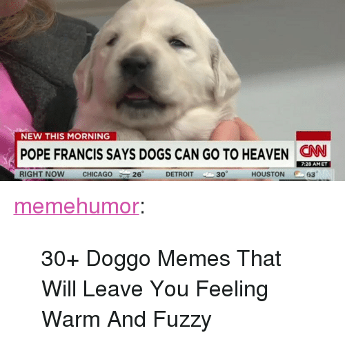 "Doggo Memes: NEW THIS MORNING  POPE FRANCIS SAYS DOGS CAN GO TO HEAVEN CN  7:28 AMET  RIGHT NOW  CHICAGO  26°  DETROIT 30  HOUSTON 63 <p><a href=""http://memehumor.net/post/166397764385/30-doggo-memes-that-will-leave-you-feeling-warm"" class=""tumblr_blog"">memehumor</a>:</p>  <blockquote><p>30+ Doggo Memes That Will Leave You Feeling Warm And Fuzzy</p></blockquote>"