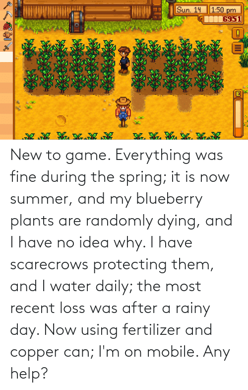 protecting: New to game. Everything was fine during the spring; it is now summer, and my blueberry plants are randomly dying, and I have no idea why. I have scarecrows protecting them, and I water daily; the most recent loss was after a rainy day. Now using fertilizer and copper can; I'm on mobile. Any help?