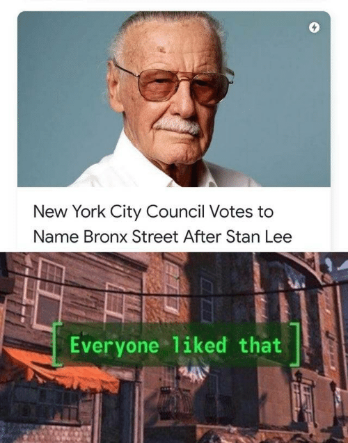 To Name: New York City Council Votes to  Name Bronx Street After Stan Lee  Everyone liked that