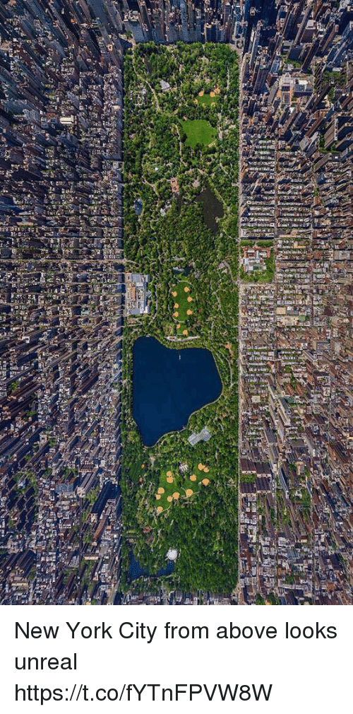 New York, Girl Memes, and New York City: New York City from above looks unreal https://t.co/fYTnFPVW8W