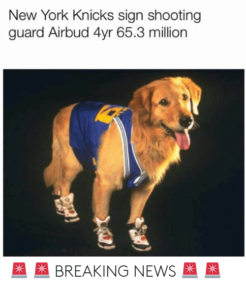 New York Knicks: New York Knicks sign shooting  guard Airbud 4yr 65.3 million 🚨 🚨 BREAKING NEWS 🚨 🚨