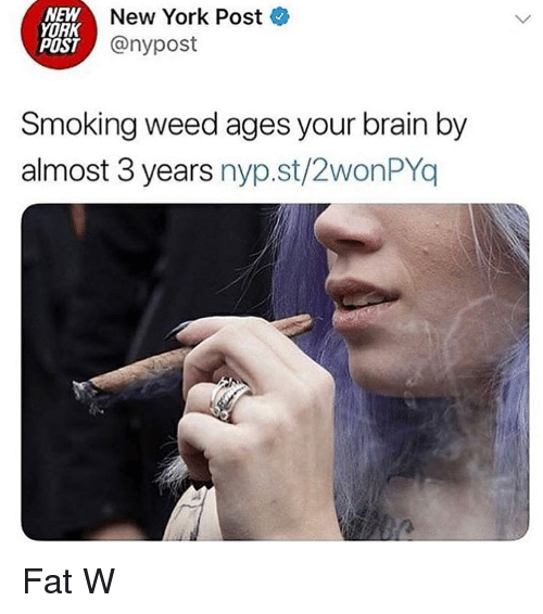 New York, New York Post, and Smoking: NEW  YORK  POST  New York Poste  @nypost  Smoking weed ages your brain by  almost 3 years nyp.st/2wonPYo Fat W