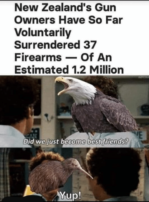 Firearms: New Zealand's Gun  Owners Have So Far  Voluntarily  Surrendered 37  Firearms Of An  Estimated 1.2 Million  Did we just become best friends?  Yup!