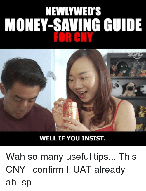 Memes, Money, and 🤖: NEWLYWED'S  MONEY-SAVING GUIDE  FOR CNY  WELL IF YOU INSIST Wah so many useful tips... This CNY i confirm HUAT already ah! sp