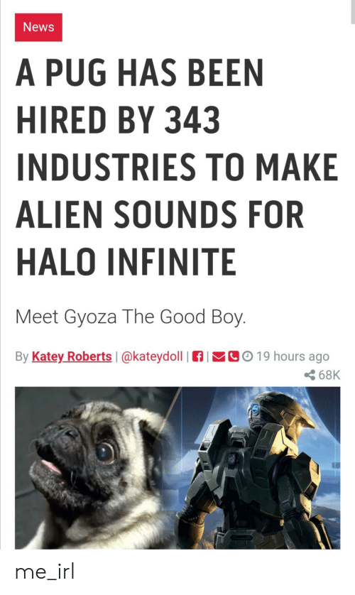 pug: News  A PUG HAS BEEN  HIRED BY 343  INDUSTRIES TO MAKE  ALIEN SOUNDS FOR  HALO INFINITE  Meet Gyoza The Good Boy.  By Katey Roberts  CO19 hours ago  @kateydoll  68K me_irl