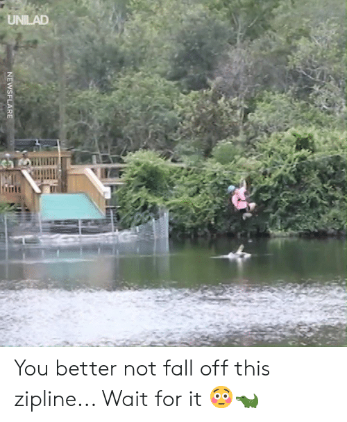Better Not: NEWSFLARE You better not fall off this zipline... Wait for it 😳🐊