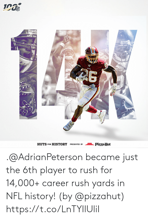Memes, Nfl, and Pizza: NFL  ddel  Riddell  REDSKIKS  Pizza Hut  PRESENTED BY  HUTS FOR HISTORY .@AdrianPeterson became just the 6th player to rush for 14,000+ career rush yards in NFL history!   (by @pizzahut) https://t.co/LnTYIlUliI