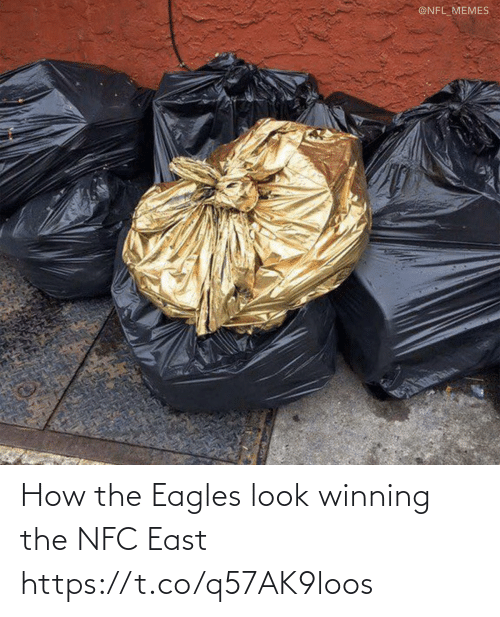 nfl memes: @NFL_MEMES How the Eagles look winning the NFC East https://t.co/q57AK9loos
