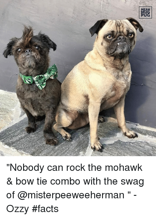 """Facts, Memes, and Swag: NGG """"Nobody can rock the mohawk & bow tie combo with the swag of @misterpeeweeherman """" -Ozzy #facts"""