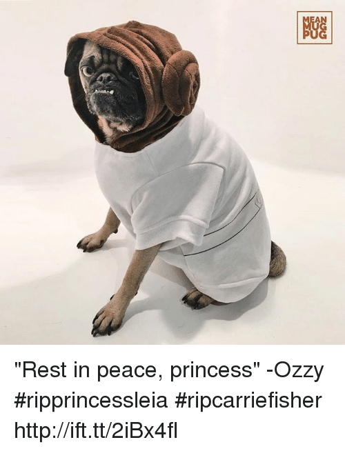 """Memes, Princess, and 🤖: NGG """"Rest in peace, princess"""" -Ozzy #ripprincessleia #ripcarriefisher http://ift.tt/2iBx4fl"""