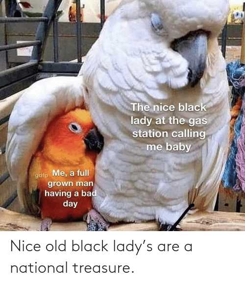 lady: Nice old black lady's are a national treasure.