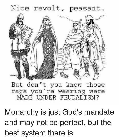 Politics, Best, and Monarchy: Nice revolt, peasant  But don't you know those  rags you're wearing were  MADE UNDER FEUDALISM?