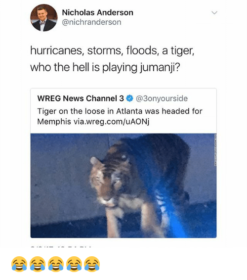 channeling: Nicholas Anderson  @nichranderson  hurricanes, storms, floods, a tiger,  who the hell is playing jumanji?  wREG News Channel 3ネ@3onyourside  Tiger on the loose in Atlanta was headed for  Memphis via.wreg.com/uAONj 😂😂😂😂😂