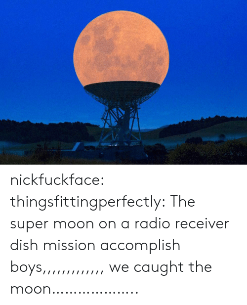 Radio, Tumblr, and Blog: nickfuckface:  thingsfittingperfectly:  The super moon on a radio receiver dish  mission accomplish boys,,,,,,,,,,,,, we caught the moon………………..