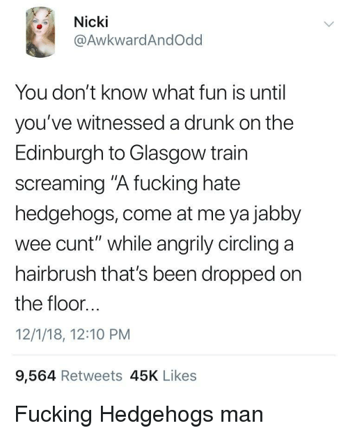 """circling: Nicki  @AwkwardAndOdd  You don't know what fun is until  you've witnessed a drunk on the  Edinburgh to Glasgow train  screaming """"A fucking hate  hedgehogs, come at me ya jabby  wee cunt"""" while angrily circling a  hairbrush that's been dropped on  the floor...  12/1/18, 12:10 PM  9,564 Retweets 45K Likes Fucking Hedgehogs man"""