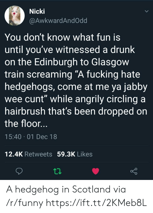 """circling: Nicki  @AwkwardAndOdd  You don't know what fun is  until you've witnessed a drunk  on the Edinburgh to Glasgow  train screaming """"A fucking hate  hedgehogs, come at me ya jabby  wee cunt"""" while angrily circling a  hairbrush that's been dropped on  the floor  15:40 01 Dec 18  12.4K Retweets 59.3K Likes A hedgehog in Scotland via /r/funny https://ift.tt/2KMeb8L"""