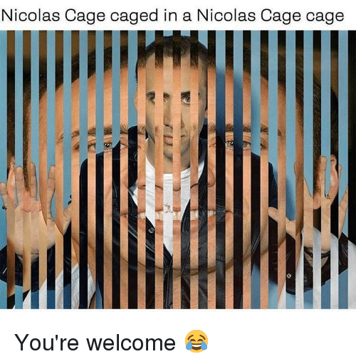 Memes, Nicolas Cage, and 🤖: Nicolas Cage caged in a N  icolas Cage cage You're welcome 😂