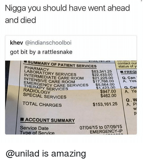 Anaconda, Date, and Patient: Nigga you should have went ahead  and died  khev @indianschoolboi  got bit by a rattlesnake  100 o ''40 -l contact our  status of y  SUMMARY OF PATIENT SERVICES  PHARMACY  LABORATORY SERVICES  INTERMEDIATE CARE ROOM $1.  $83,341.25 | ■FREQI  $22,433.00  $21.225.00Can  $17,766.00 A. Yes  INTENSIVE CARE ROOM  ERGENCY CARE SERVICES $5.564 00  THERAPY SERVICES  a. Car  DIOLOGY  SPECIAL SERVICES  1,423.00  $947.00 A. Y  $462.00  Q. W  $153,161.25 A. P  TOTAL CHARGES  ■ ACCOUNT SUMMARY  07/04/15 to 07/09/15  EMERGENCY-IP  Service Date  Tvpe of Service @unilad is amazing