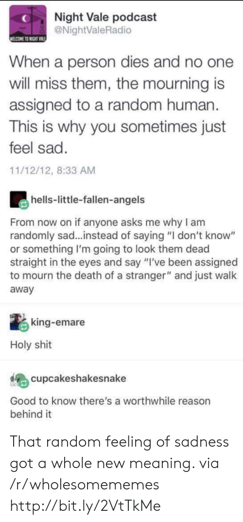 "mourning: Night Vale podcast  @NightValeRadio  ELCOME TO NIGHT VRIE  When a person dies and no one  will miss them, the mourning is  assigned to a random human  This is why you sometimes just  feel sad.  11/12/12, 8:33 AM  hells-little-fallen-angels  From now on if anyone asks me why I am  randomly sad...instead of saying ""I don't know""  or something I'm going to look them dead  straight in the eyes and say ""I've been assigned  to mourn the death of a stranger"" and just walk  away  king-emare  Holy shit  cupcakeshakesnake  Good to know there's a worthwhile reason  behind it That random feeling of sadness got a whole new meaning. via /r/wholesomememes http://bit.ly/2VtTkMe"