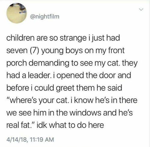 "Children, Memes, and Windows: @nightfilm  children are so strange i just had  seven (7) young boys on my front  porch demanding to see my cat. they  had a leader. i opened the door and  before i could greet them he said  ""where's your cat. i know he's in there  we see him in the windows and hes  real fat."" idk what to do here  4/14/18, 11:19 AM"