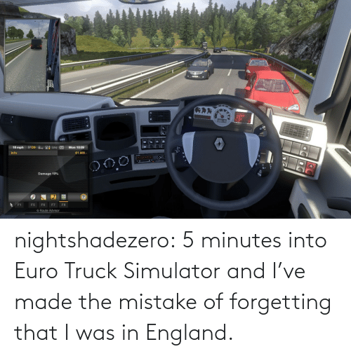 minutes: nightshadezero: 5 minutes into Euro Truck Simulator and I've made the mistake of forgetting that I was in England.