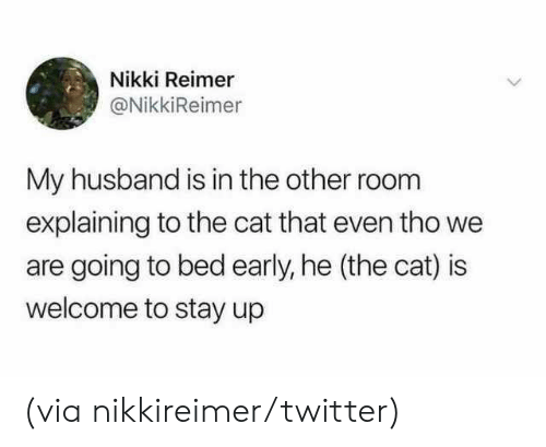 Dank, Twitter, and Husband: Nikki Reimer  @NikkiReimer  My husband is in the other room  explaining to the cat that even tho we  are going to bed early, he (the cat) is  welcome to stay up (via nikkireimer/twitter)