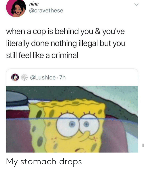 Criminal, Cop, and Stomach: nina  @cravethese  when a cop is behind you & you've  literally done nothing illegal but you  still feel like a criminal  @Lushlce 7h My stomach drops