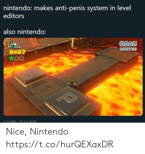 Nintendo, Penis, and Nice: nintendo: makes anti-penis system in level  editors  also nintendo:  0265  005750  &48  Ox07  P  5:34 PM-18 Jul 2019 Nice, Nintendo https://t.co/hurQEXaxDR