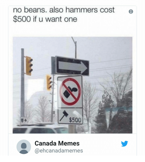Canada Memes: no beans. also hammers cost o  $500 if u want one  $500  Canada Memes  @ehcanadamemes