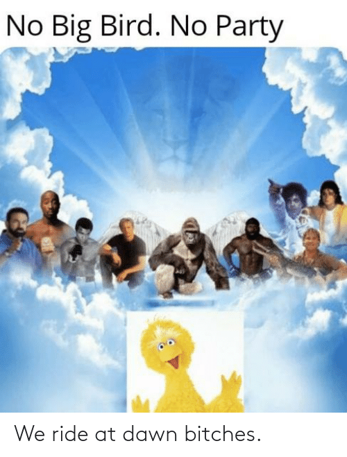 No Big Bird No Party We Ride At Dawn Bitches Party Meme On