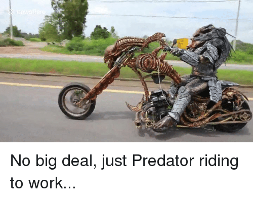 Dank, Work, and Predator: No big deal, just Predator riding to work...