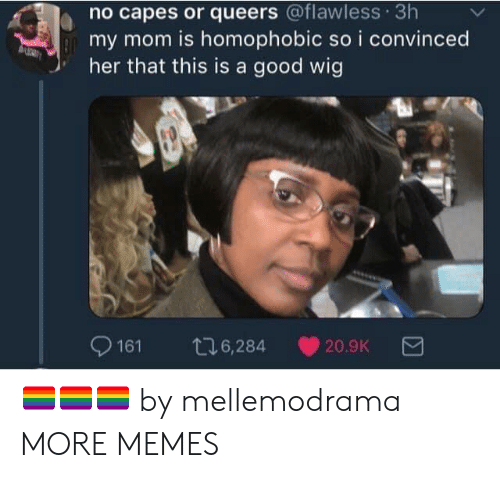 flawless: no capes or queers @flawless 3h  my mom is homophobic so i convinced  her that this is a good wig  9161 t6,284 20.9K 🏳️🌈🏳️🌈🏳️🌈 by mellemodrama MORE MEMES
