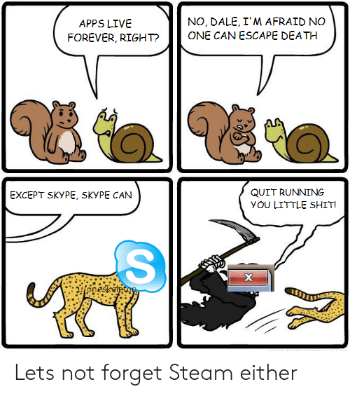 Skype: NO, DALE, I'M AFRAID NO  ONE CAN ESCAPE DEATH  APPS LIVE  FOREVER, RIGHT?  QUIT RUNNING  EXCEPT SKYPE, SKYPE CAN  yOU LITTLE SHIT!  х  onesketecoy Lets not forget Steam either