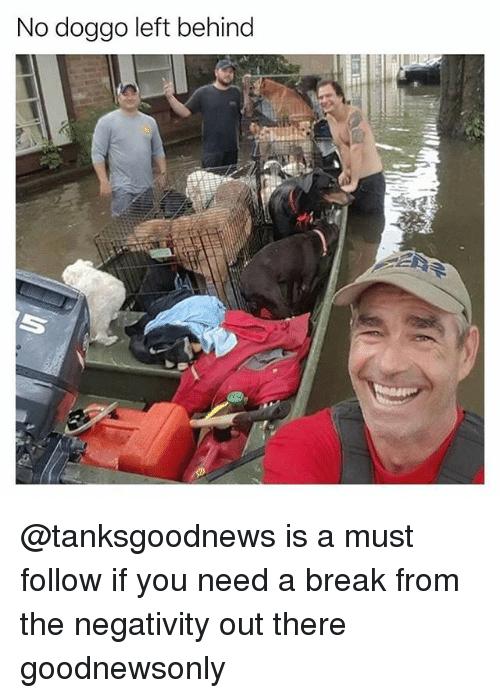 Behinde: No doggo left behind @tanksgoodnews is a must follow if you need a break from the negativity out there goodnewsonly
