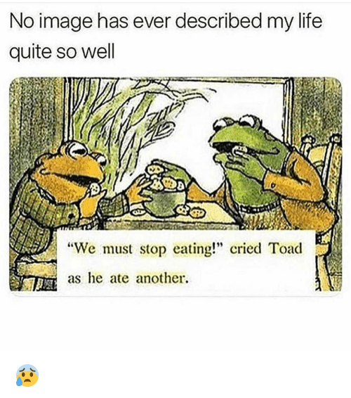 """Funny, Life, and Image: No image has ever described my life  quite so well  """"We must stop eating! cried Toad  as he ate another. 😰"""