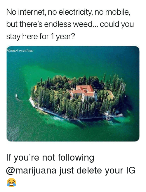 inventions: No internet, no electricity, no mobile,  but there's endless weed... could you  stay here for 1 year?  @finest.inventions If you're not following @marijuana just delete your IG 😂