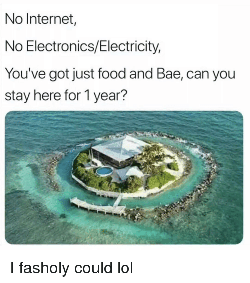 no internet: No  Internet  No Electronics/Electricity,  You've  got just food and Bae, can you  stay here for 1 year? I fasholy could lol
