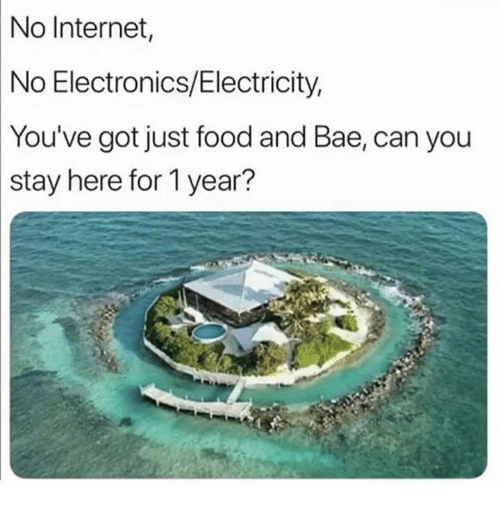 Bae, Food, and Internet: No  Internet,  No Electronics/Electricity,  You've  got just food and Bae, can you  stay  here for 1 year?