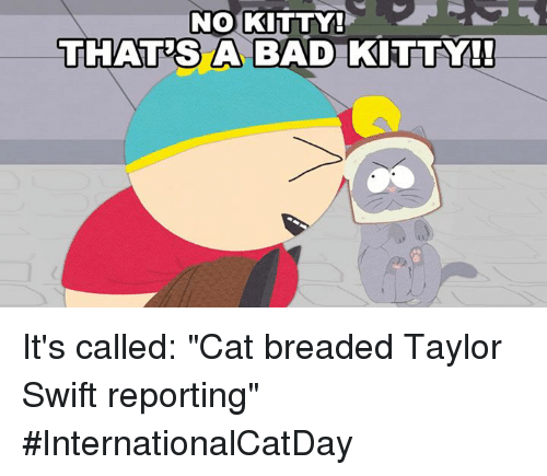 """Swifting: NO KITTY!  THATES A BAD KITTY!  A BAD KITTY It's called: """"Cat breaded Taylor Swift reporting"""" #InternationalCatDay"""