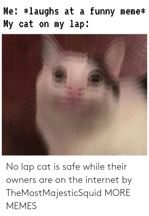 On The Internet: No lap cat is safe while their owners are on the internet by TheMostMajesticSquid MORE MEMES