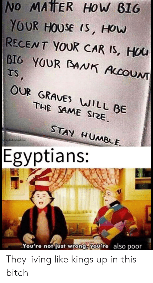 Bitch, World Wrestling Entertainment, and House: No MATER HoW BIG  YOUR HOUSE IS, HOw  RECENT YOUR CAR IS, HOU  GIG YOUR BAANK AccoUNT  TS  OUR GRAVES WILL BE  THE SAME SIZE  STAY HUMBE  bigdsddybirdman  Egyptians:  wWE AMAN  You're not just wrong, youre also poor They living like kings up in this bitch