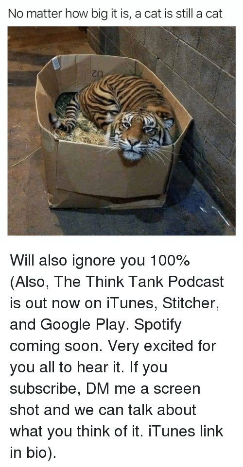 Google Play: No matter how big it is, a cat is still a cat Will also ignore you 100% (Also, The Think Tank Podcast is out now on iTunes, Stitcher, and Google Play. Spotify coming soon. Very excited for you all to hear it. If you subscribe, DM me a screen shot and we can talk about what you think of it. iTunes link in bio).